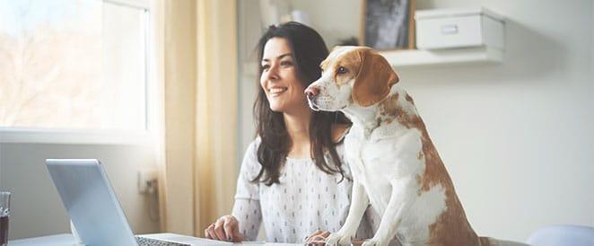 logiciel de gestion vétérinaire