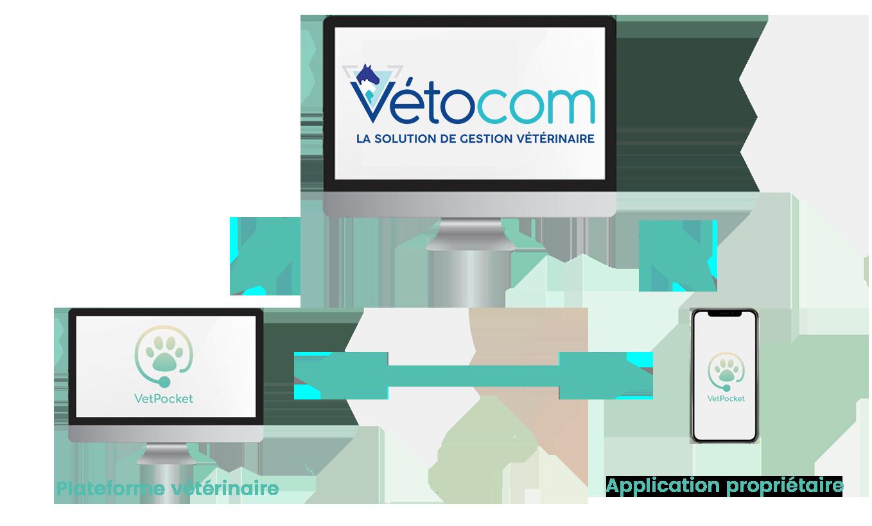 Connexions VetPocket